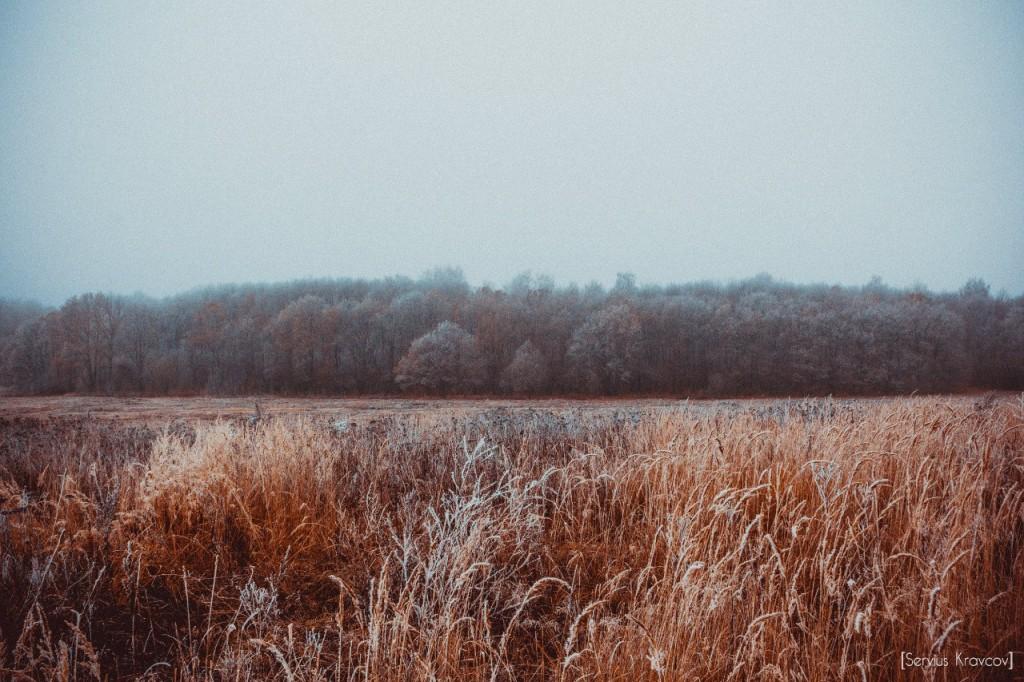 Пейзажи Владимира. Осенний иней 09