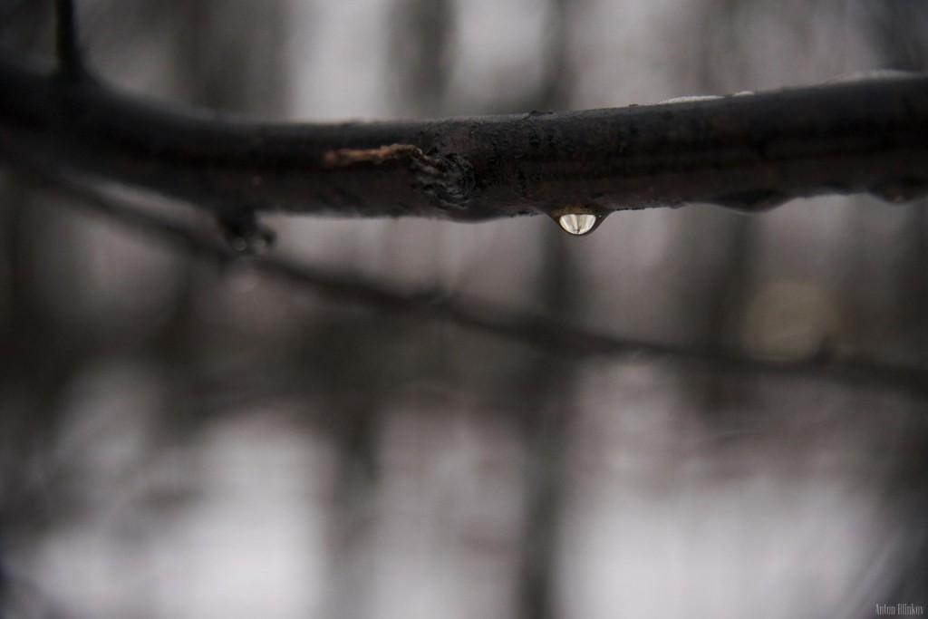 Первые дни декабря во Владимирской области 03