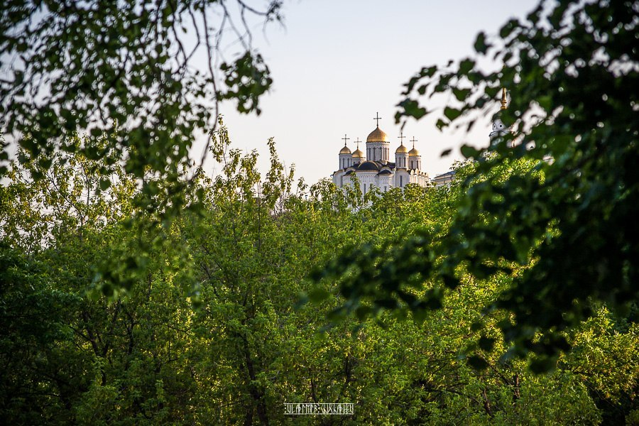 Прогулка по зеленому Владимиру 02