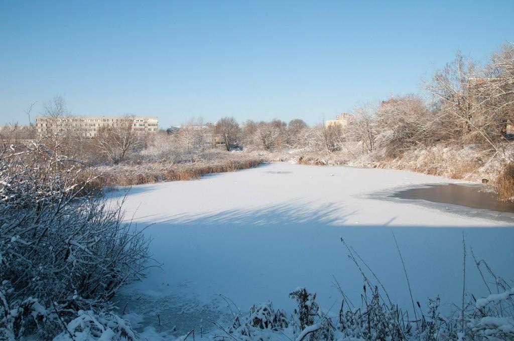 Снежная прогулка с Борисом Пучковым 05