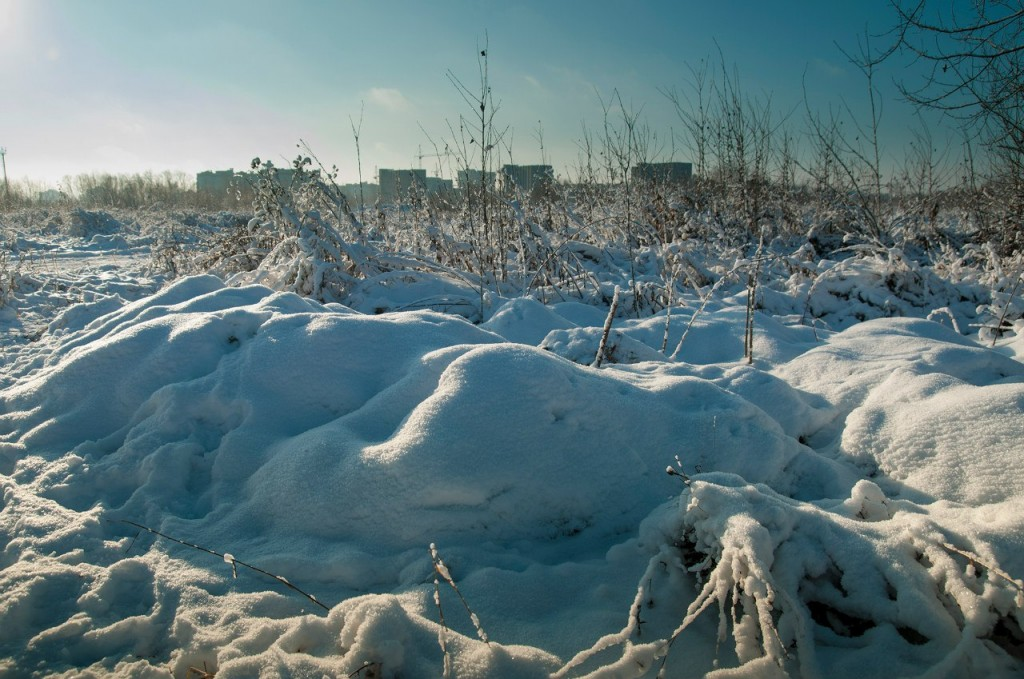 Снежная прогулка с Борисом Пучковым 08