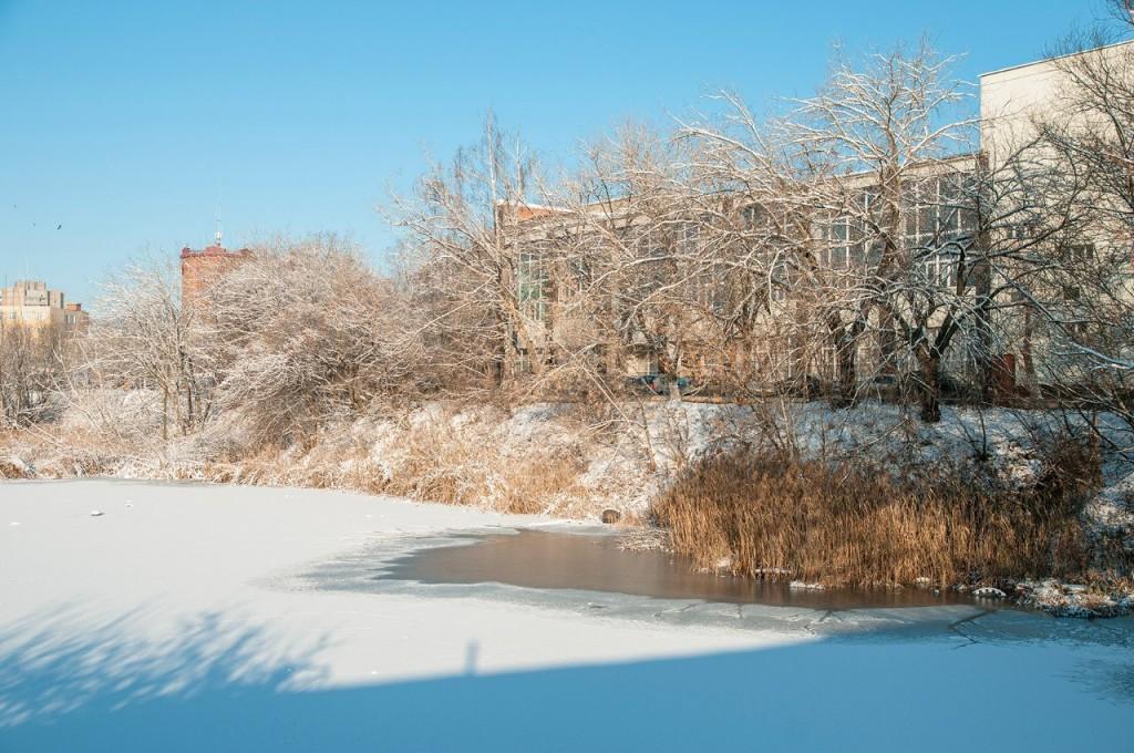 Снежная прогулка с Борисом Пучковым 10