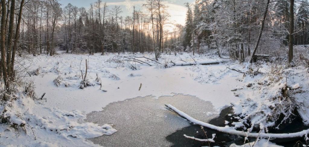 Снежный ноябрь во Владимирской деревне 07