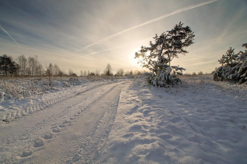 Снежный ноябрь во Владимирской деревне 08