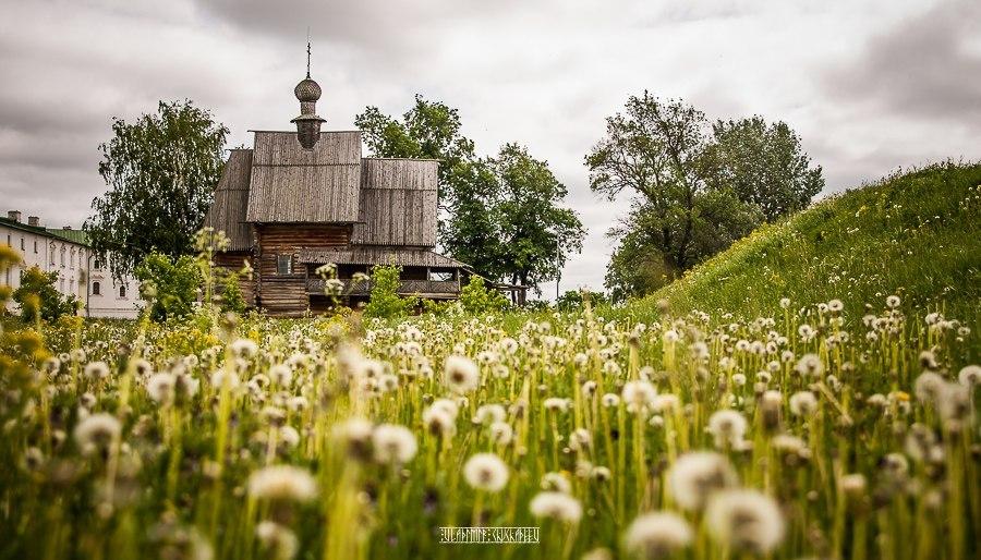 Цветущий летний Суздаль 03