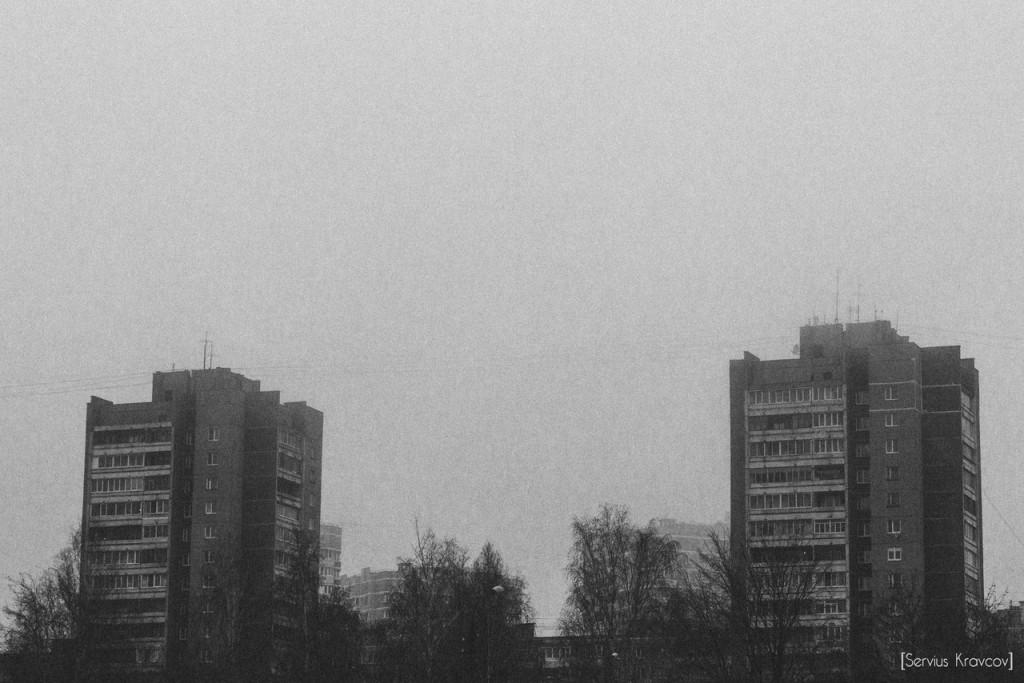 Vladimir; Good fog morning 08