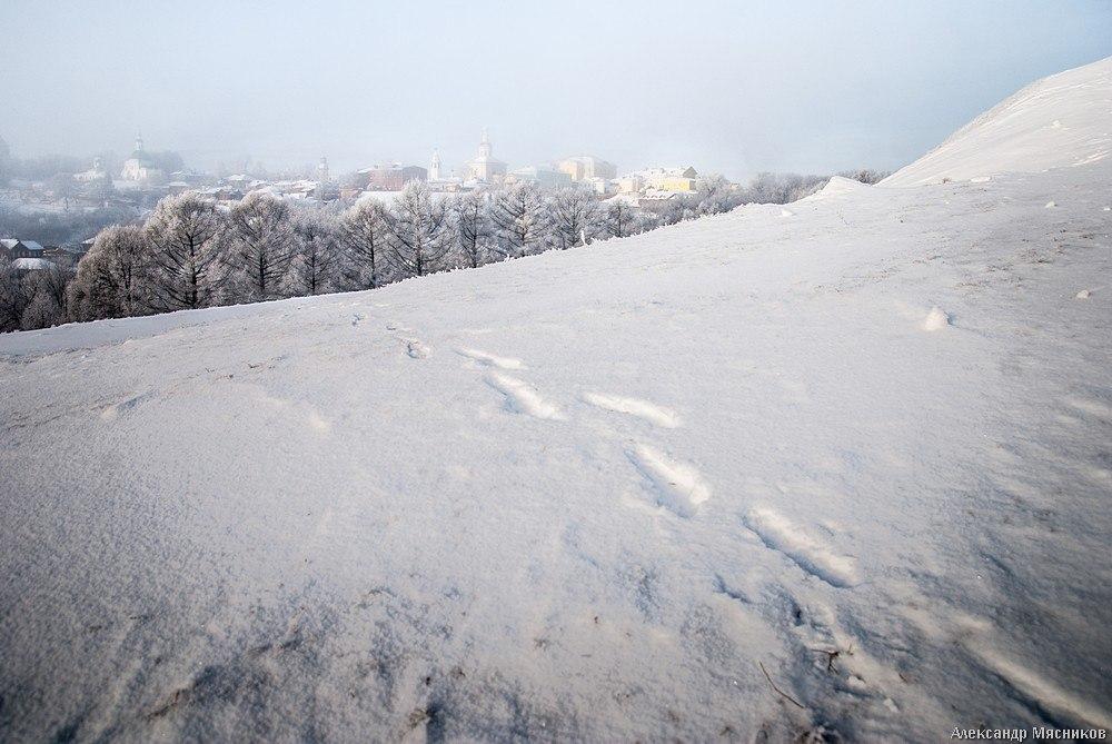 Белое безмолвие от Александра Мясникова 07