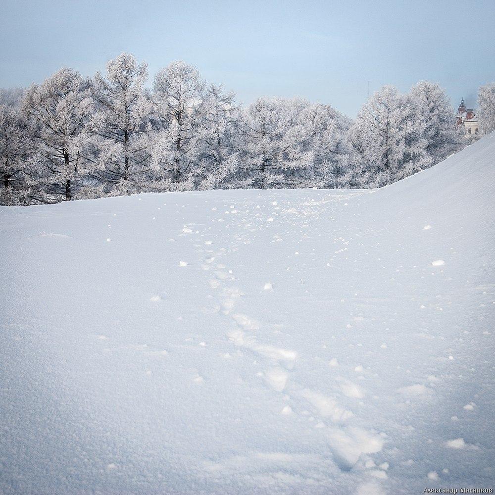 Белое безмолвие от Александра Мясникова 09