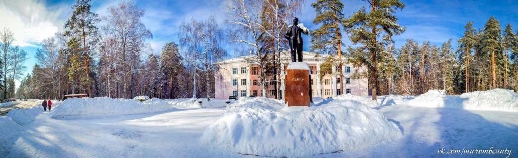 Вербовский, площадь перед Домом Культуры. Зима 2014 года, день