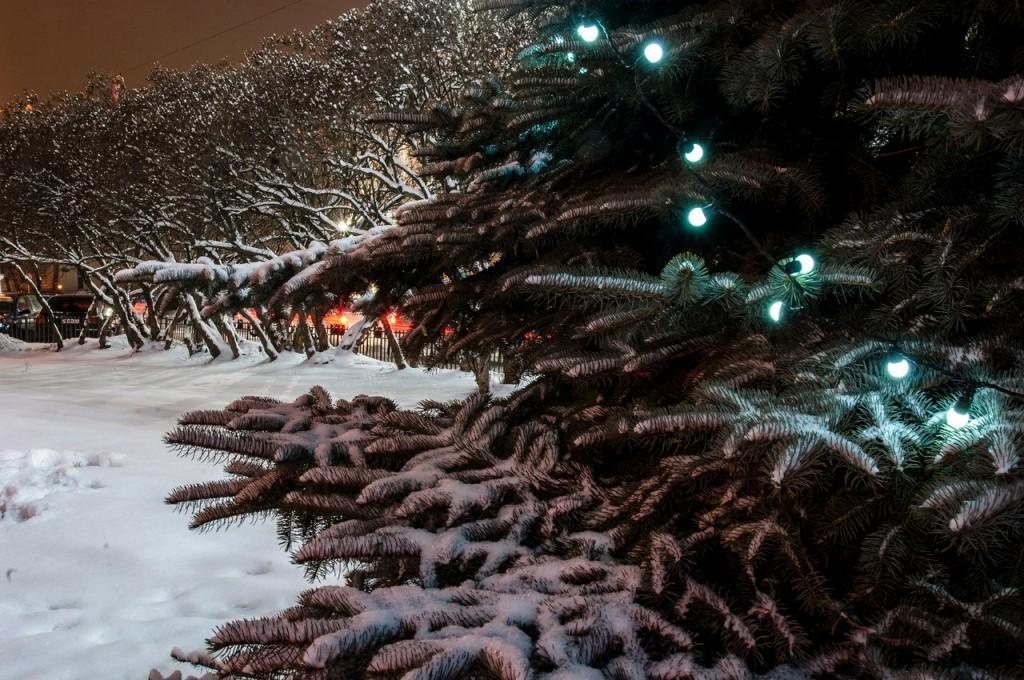 Владимир Рождественский и Новогодний 26