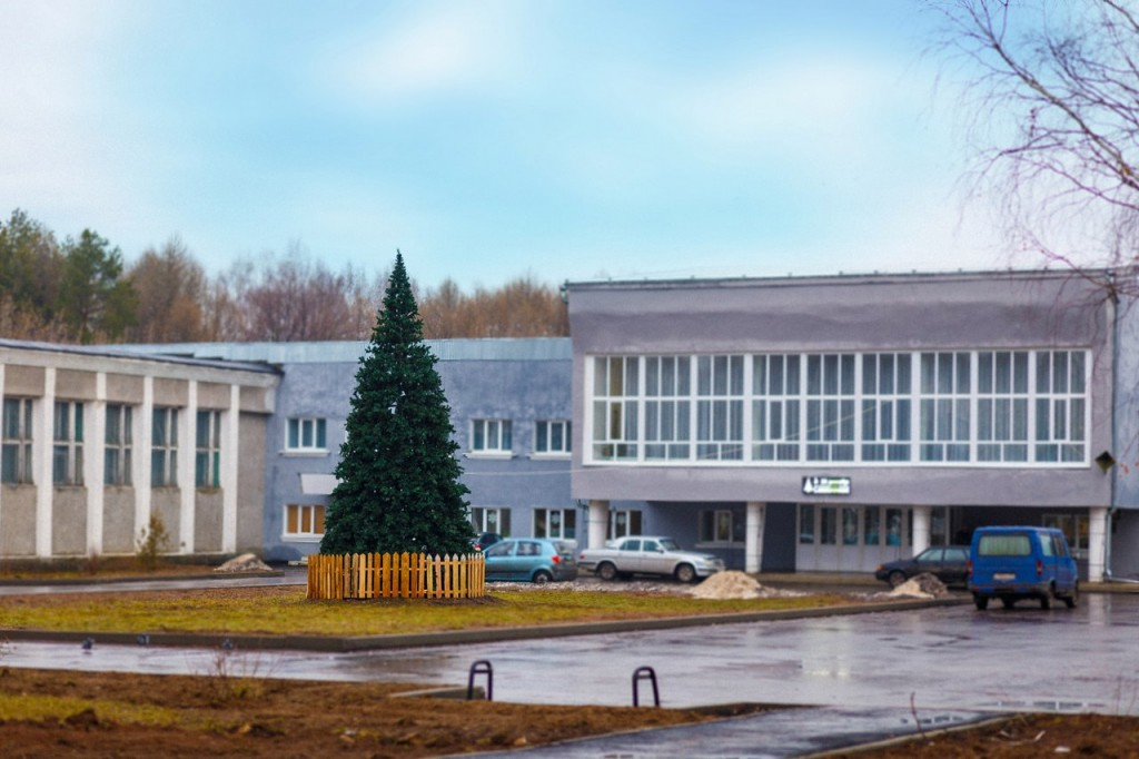 Вязниковские ёлочки в декабре 01