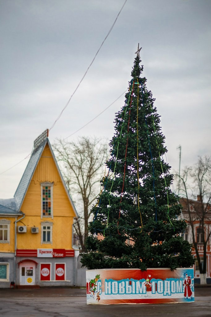 Вязниковские ёлочки в декабре 03
