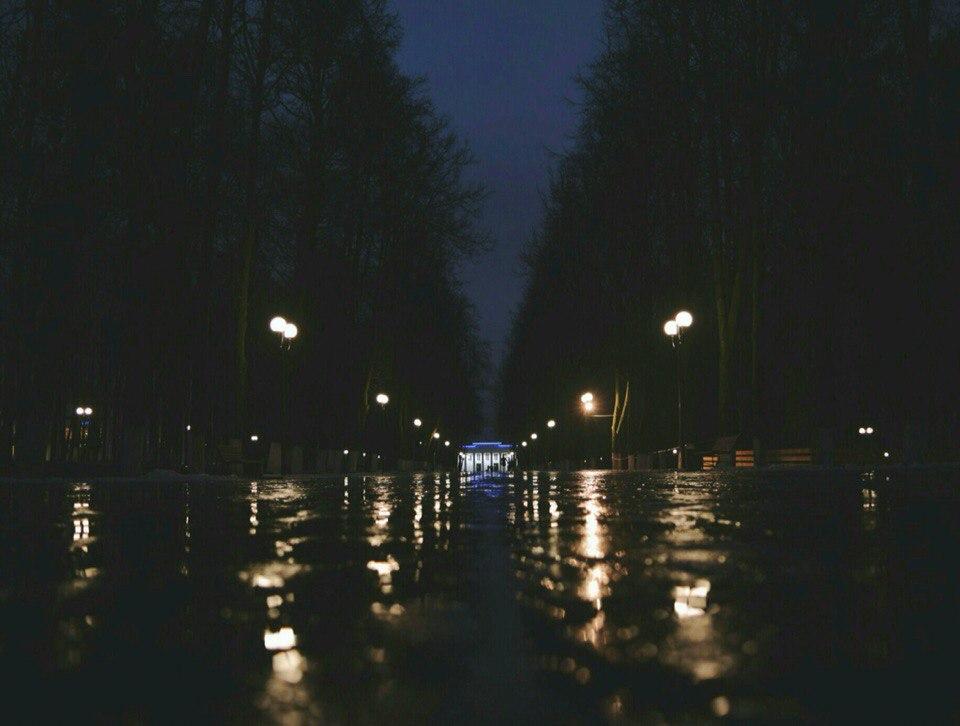 В дождливом парке городском... Владимир