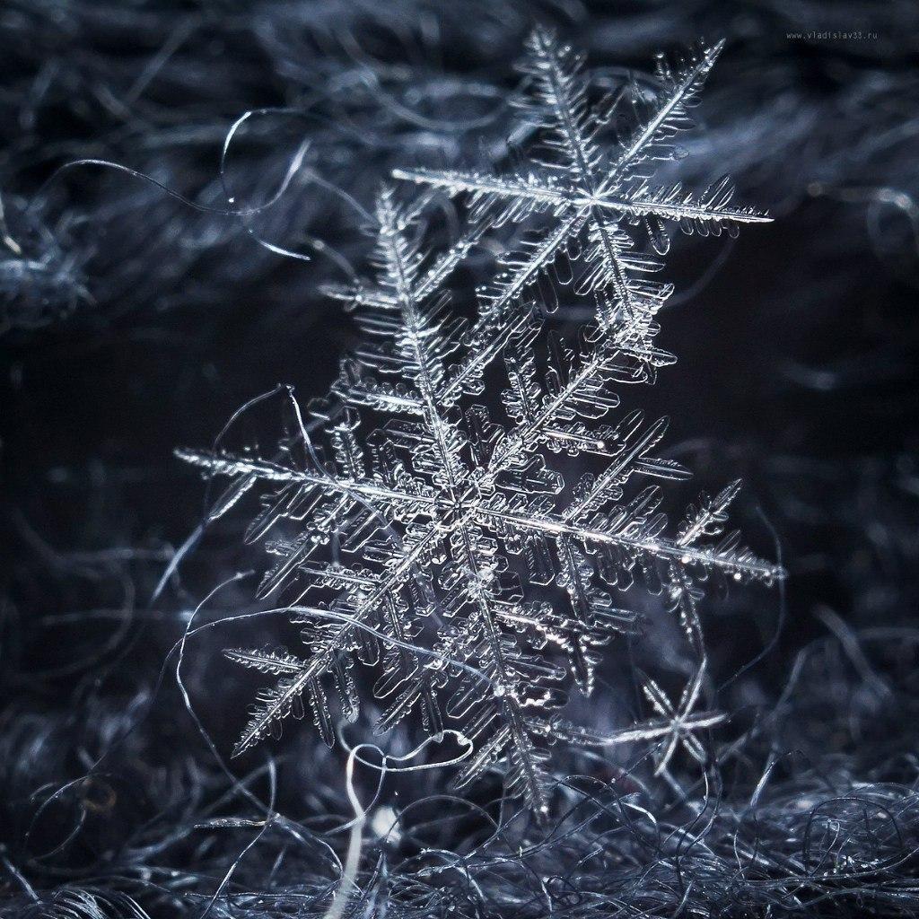 Декабрьские снежинки 04