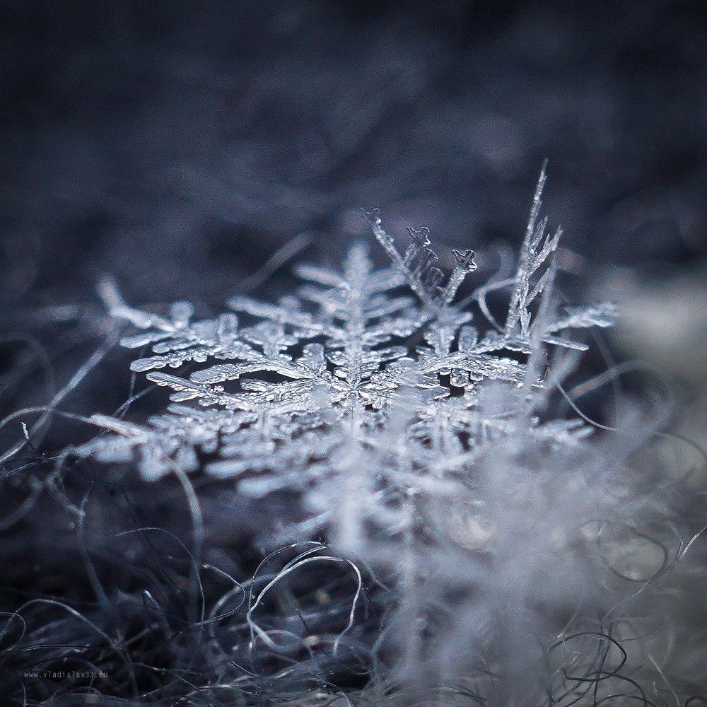 Декабрьские снежинки 07