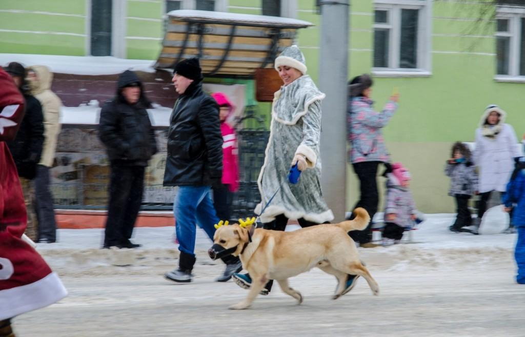 Забег Дедов Морозов и Снегурочек во Владимире 05