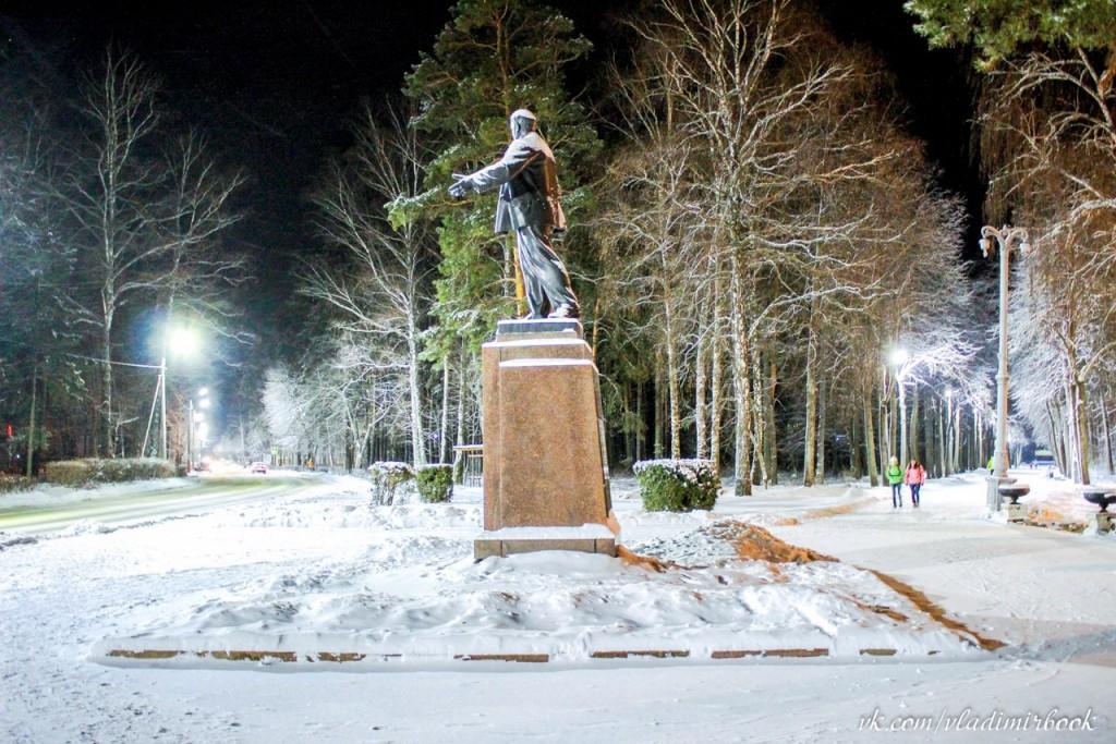 Зима 2015 на Вербовском 01