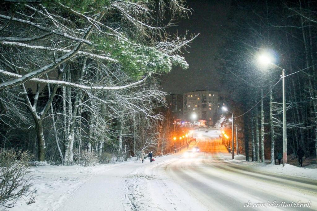 Зима 2015 на Вербовском 02