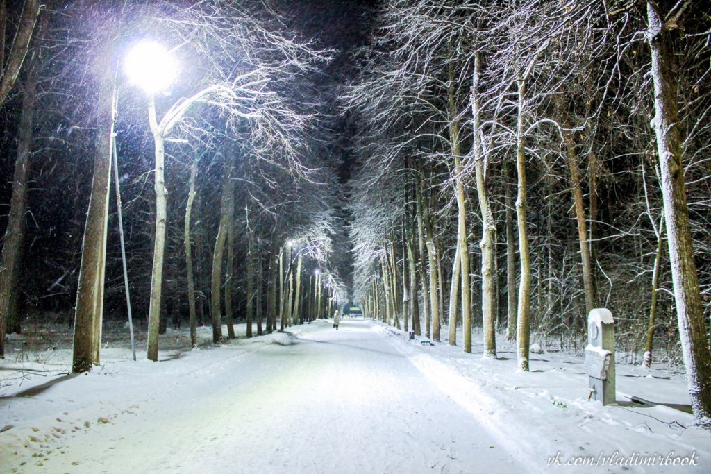 Зима 2015 на Вербовском 05