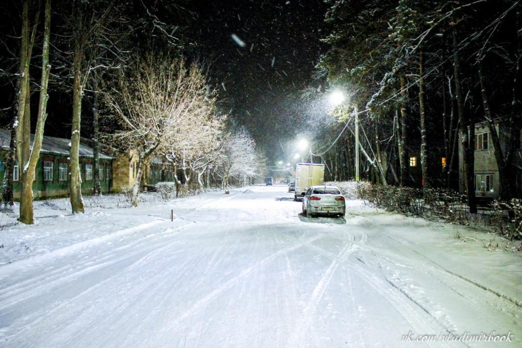 Зима 2015 на Вербовском 06