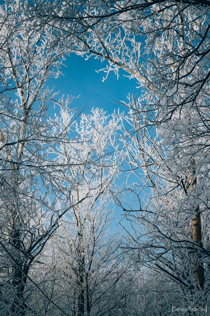 Мороз и солнце во Владимире 02