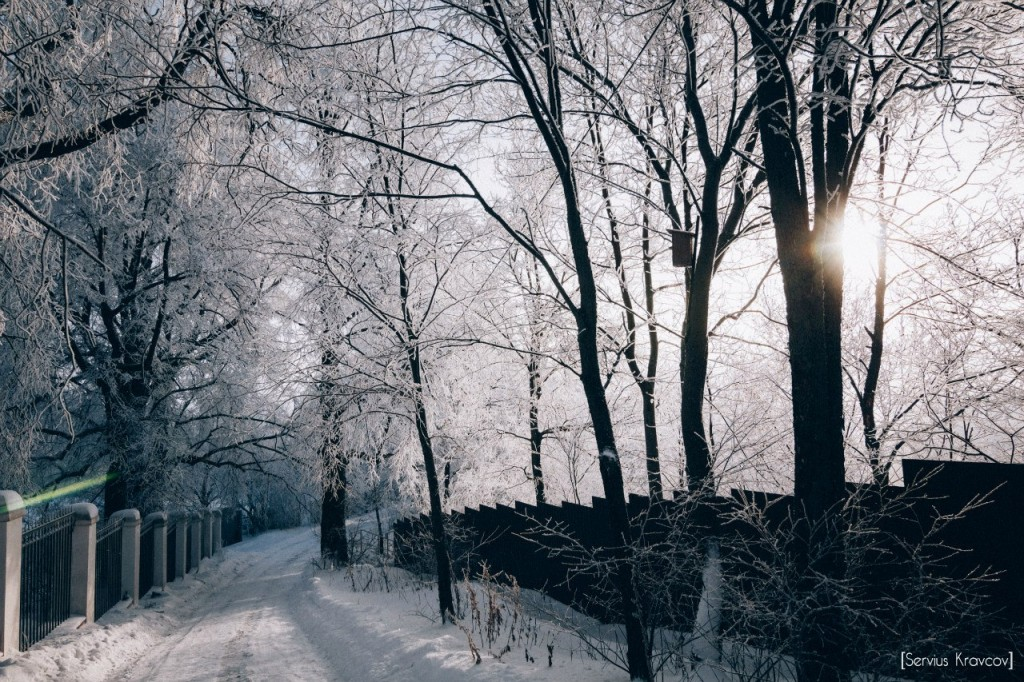 Мороз и солнце во Владимире 07