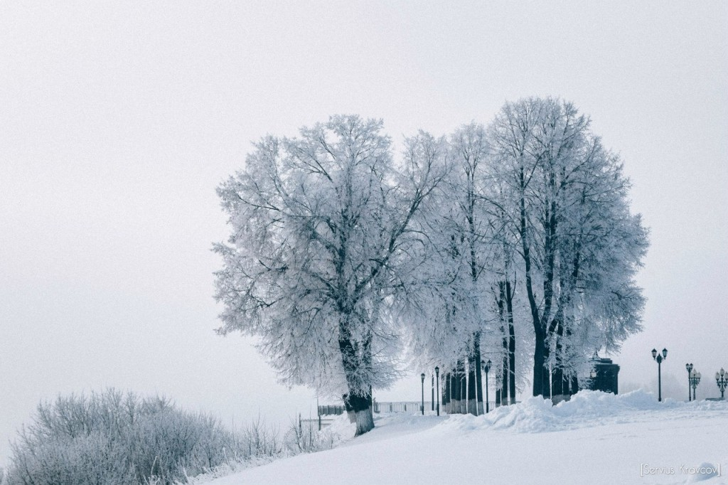 Мороз и солнце во Владимире 24