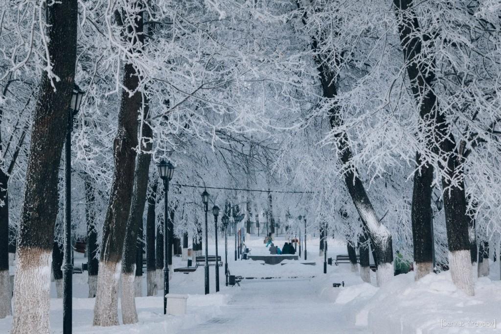 Мороз и солнце во Владимире 25