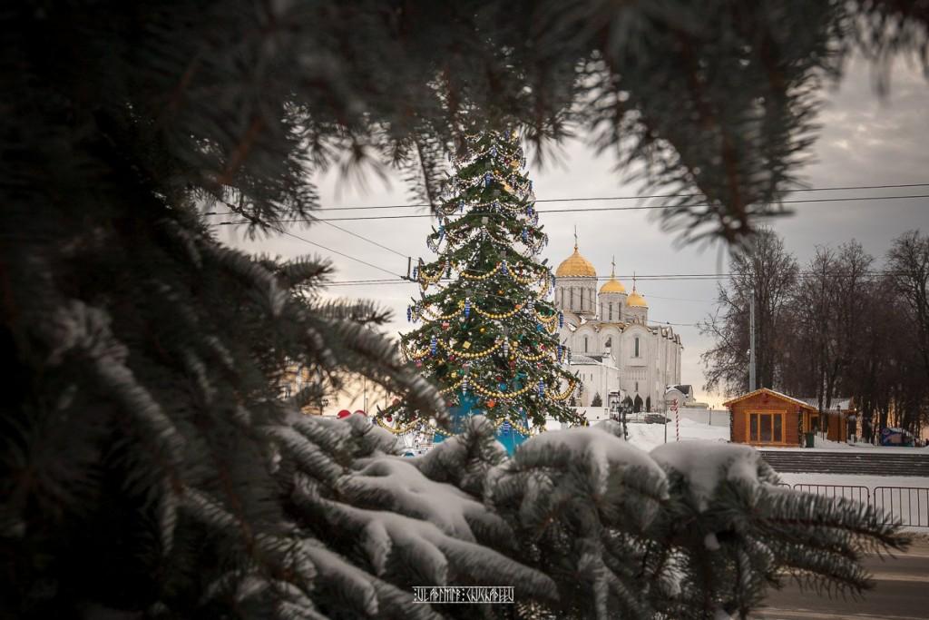Новогоднее настроение Владимира Чучадеева