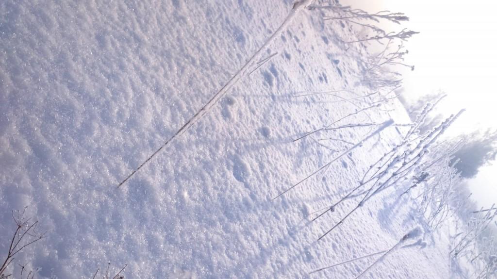 Окрестности Мурома Winter morning 01