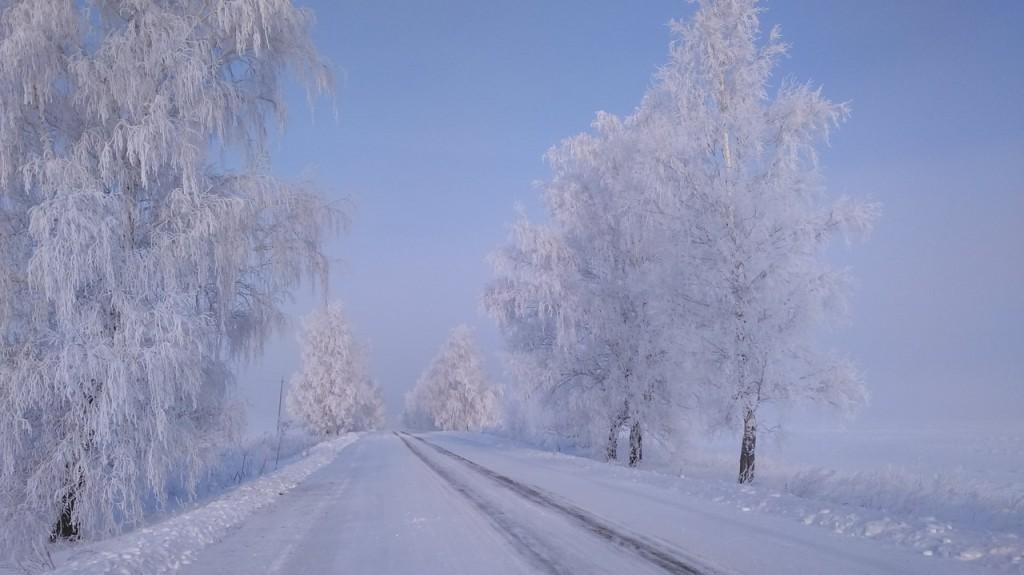Окрестности Мурома Winter morning 03