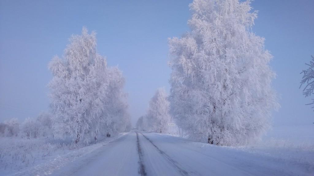 Окрестности Мурома Winter morning 05