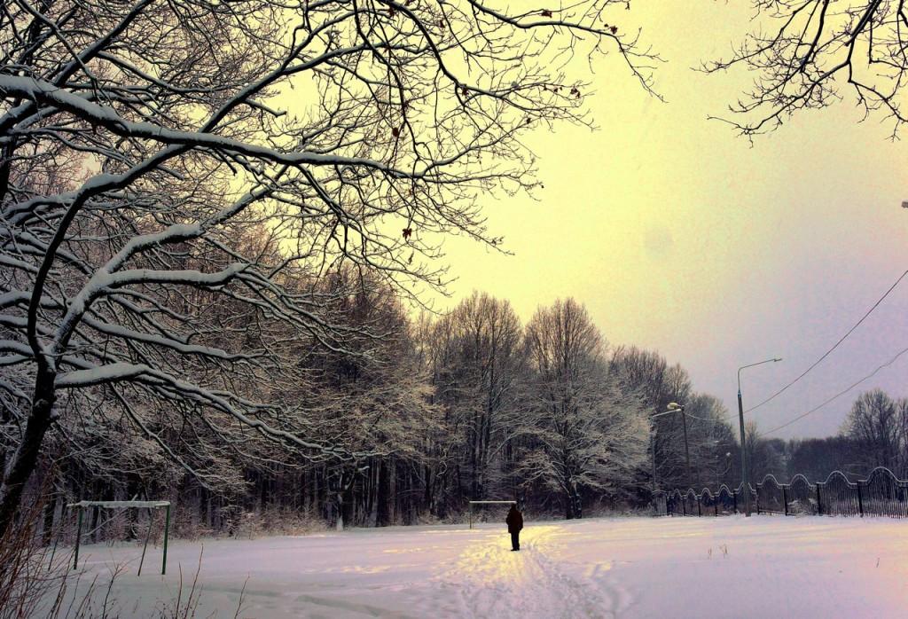 Парк Дружба Зима 03