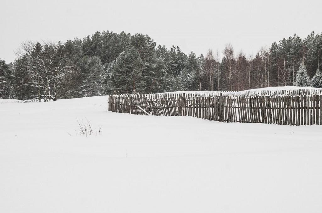Поездка в Клязьминско-Лухский заказник 03