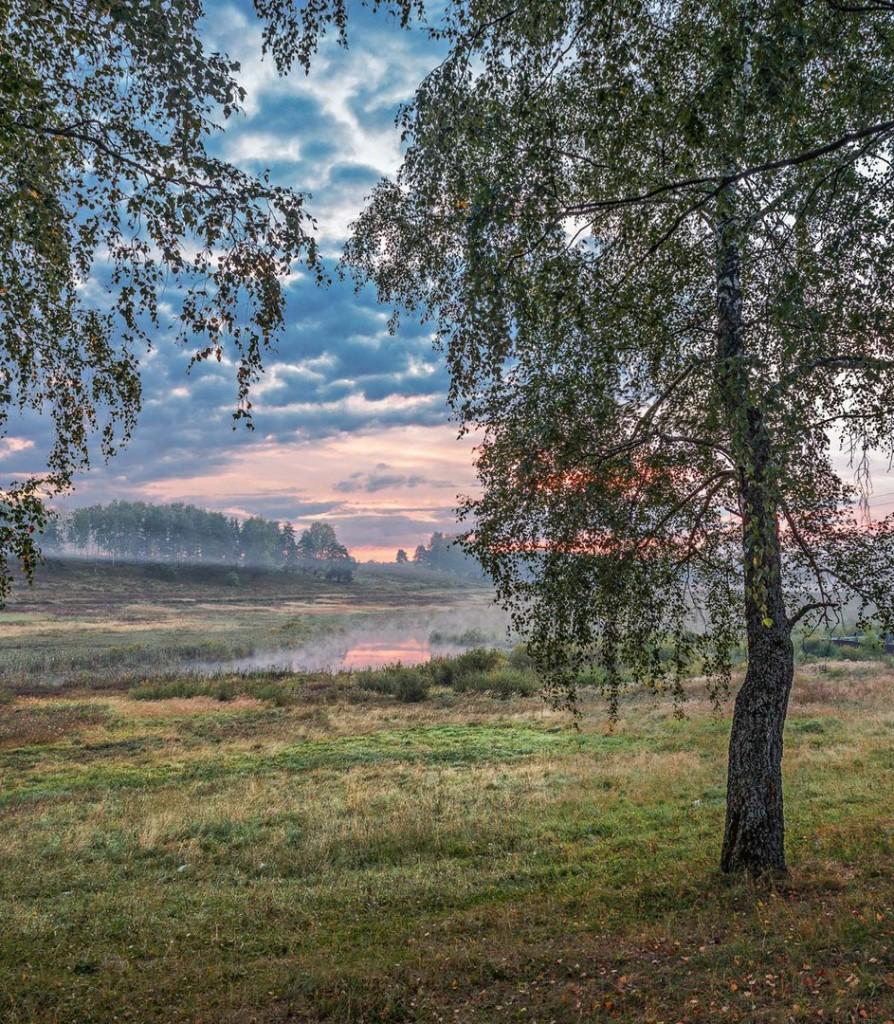 Природа Александровского района 04
