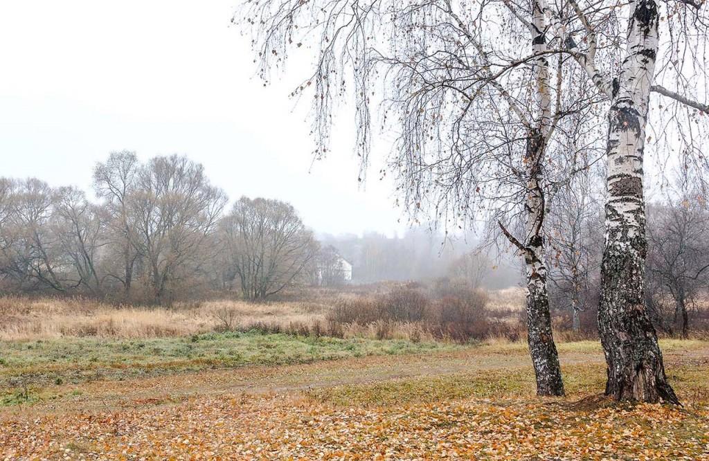 Природа Александровского района 08