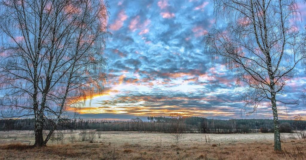 Природа Александровского района 09