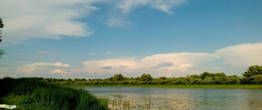 Природа в окрестностях Мурома