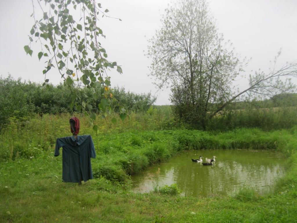 Сельская жизнь в Фоминой Рамени 04