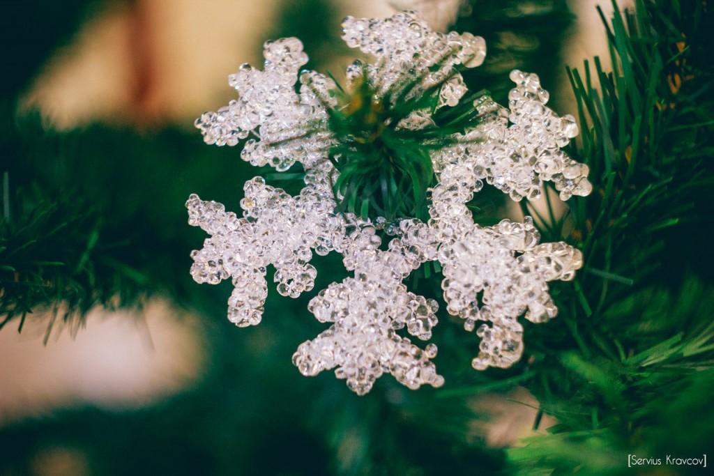 Уголок новогодних расцветок 05