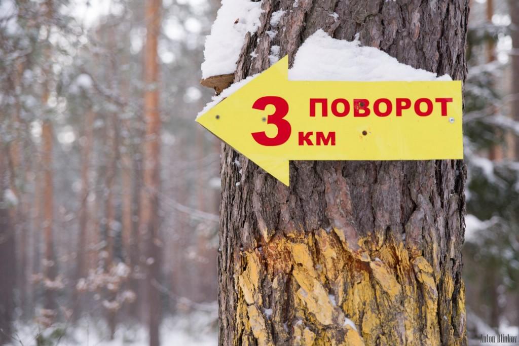 Хорошие выходные в Гусь-Хрустальном 04