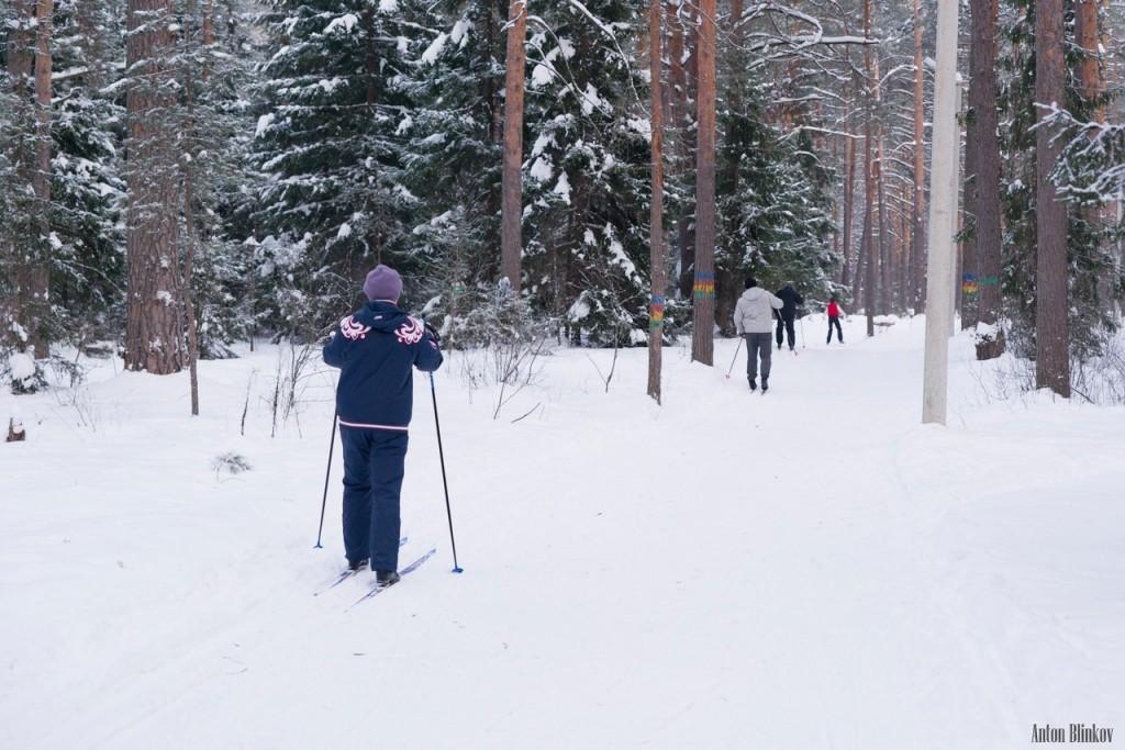 Хорошие выходные в Гусь-Хрустальном 10