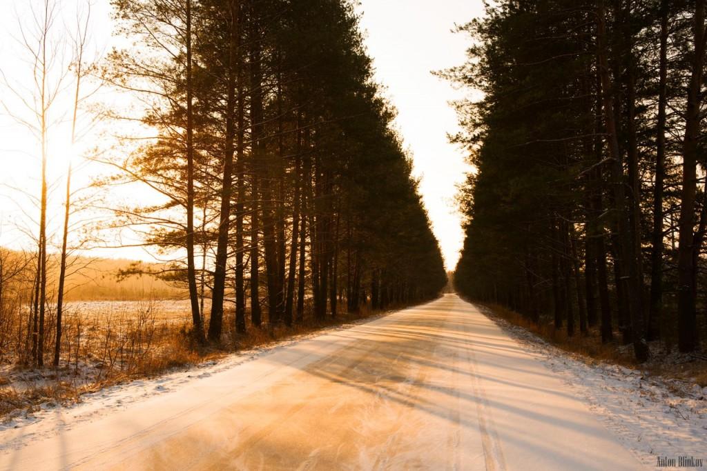 Январское утро. Солнечно и морозно.