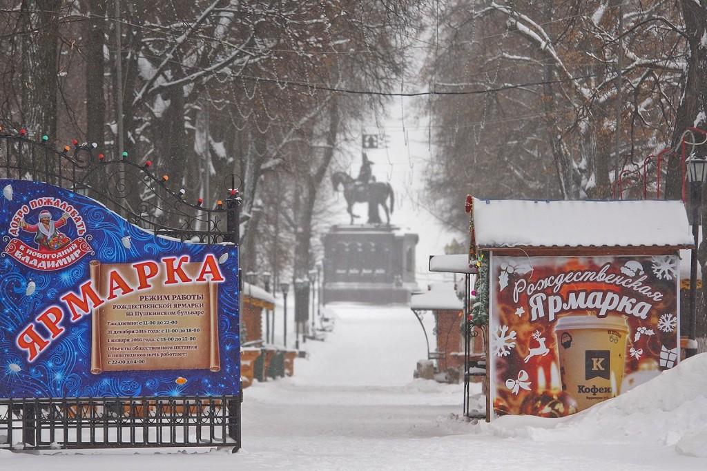 19.01.16 Снегопад во Владимире 04