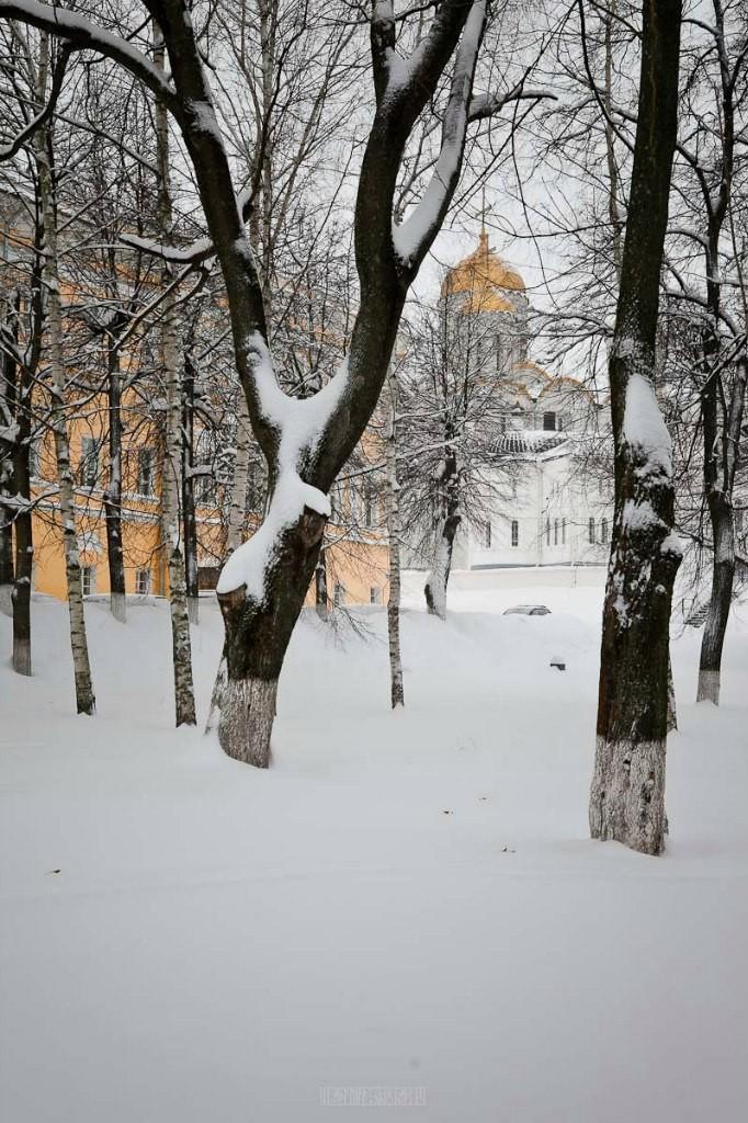 2016.01.22 Очередной снежный день 02