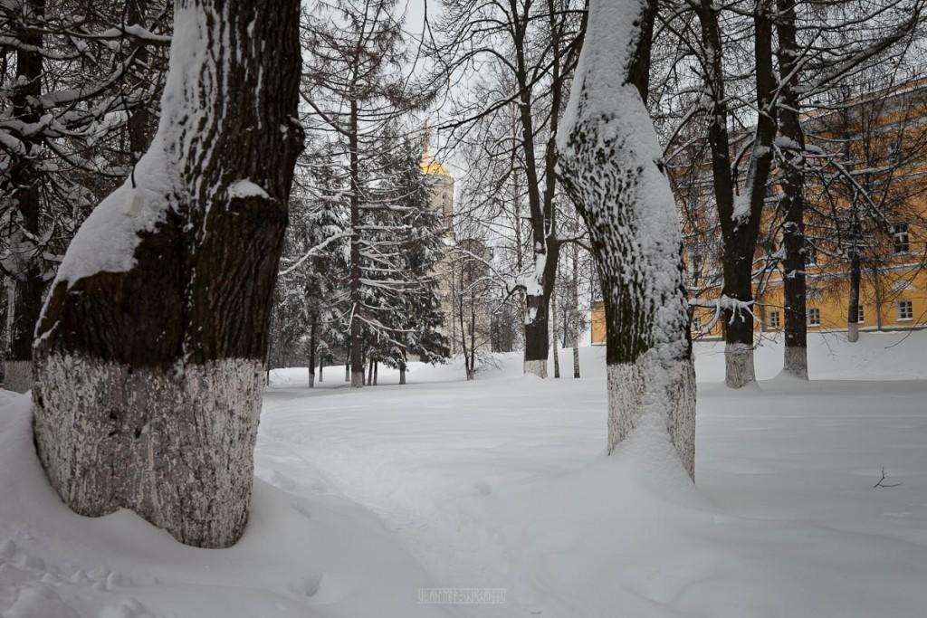2016.01.22 Очередной снежный день 08
