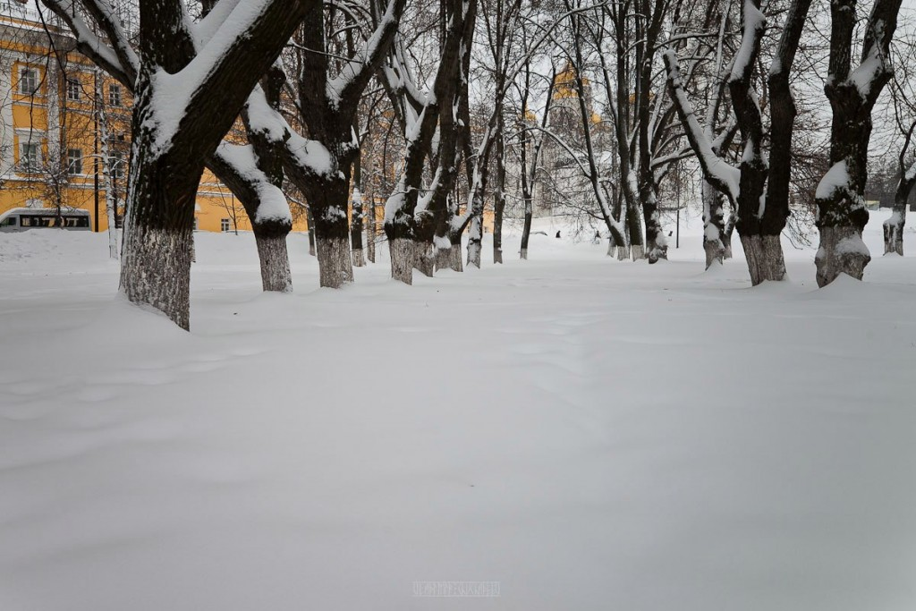 2016.01.22 Очередной снежный день 10