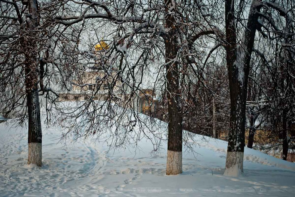 2016.01.23 Центр Владимира 14