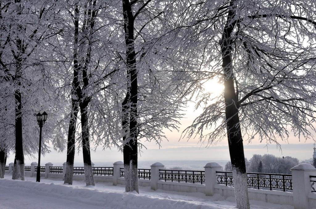 Владимир Снежный 02