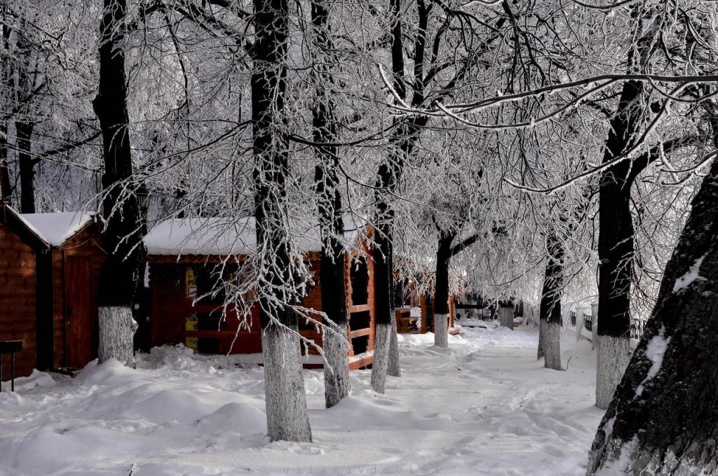 Владимир Снежный 05